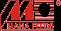 Logo-MF-1